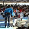 Taekwondo_AustrianOpen2014_A00078.jpg