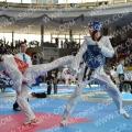Taekwondo_AustrianOpen2014_A00173.jpg