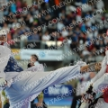 Taekwondo_AustrianOpen2014_A00260.jpg