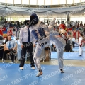 Taekwondo_AustrianOpen2014_A00343.jpg