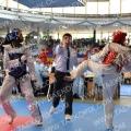 Taekwondo_AustrianOpen2014_A00357.jpg