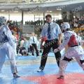 Taekwondo_AustrianOpen2014_A00445.jpg