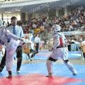 Taekwondo_AustrianOpen2014_A00448.jpg