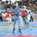 Taekwondo_AustrianOpen2014_A00454.jpg