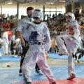 Taekwondo_AustrianOpen2014_A00480.jpg
