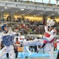 Taekwondo_AustrianOpen2014_B0248
