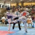 Taekwondo_AustrianOpen2014_B0300