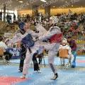 Taekwondo_AustrianOpen2014_B0303