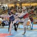 Taekwondo_AustrianOpen2014_B0304