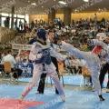 Taekwondo_AustrianOpen2014_B0316