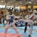 Taekwondo_AustrianOpen2014_B0317