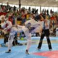 Taekwondo_AustrianOpen2014_B0330