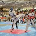 Taekwondo_AustrianOpen2014_B0375