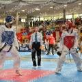 Taekwondo_AustrianOpen2014_B0385