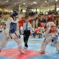 Taekwondo_AustrianOpen2014_B0426
