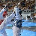 Taekwondo_AustrainMasters2015_A00128
