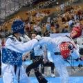 Taekwondo_AustrianOpen2015_B0112