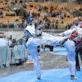 Taekwondo_AustrianOpen2015_B0301