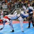 Taekwondo_AustrianOpen2016_A00019