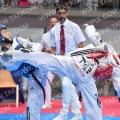 Taekwondo_AustrianOpen2017_A00194