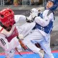 Taekwondo_AustrianOpen2017_A00202
