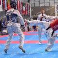 Taekwondo_AustrianOpen2017_A00424
