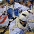 Taekwondo_BelgiumOpen2011_A0011