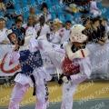 Taekwondo_BelgiumOpen2011_A0077