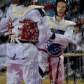 Taekwondo_BelgiumOpen2011_A0104