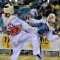 Taekwondo_BelgiumOpen2011_A0178