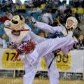Taekwondo_BelgiumOpen2011_A0179