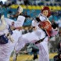Taekwondo_BelgiumOpen2011_A0199