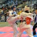 Taekwondo_BelgiumOpen2014_B0280