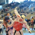Taekwondo_BelgiumOpen2014_B0288
