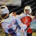 Taekwondo_BelgiumOpen2014_B0597