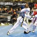 Taekwondo_BelgiumOpen2017_B0202