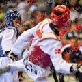 Taekwondo_BelgiumOpen2019_B00483