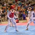 Taekwondo_BelgiumOpen2019_A0002