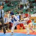 Taekwondo_GBNational2015_B0103