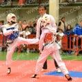 Taekwondo_DistrictZuid2015_A0254