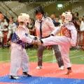 Taekwondo_DistrictZuid2015_A0345