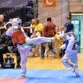 Taekwondo_DutchMasters2014_A0108