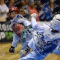 Taekwondo_DutchMasters2015_A00278