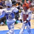 Taekwondo_DutchMasters2017_A00281