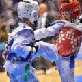 Taekwondo_DutchMasters2017_A00319