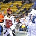 Taekwondo_DutchOpen2010_B0011.jpg