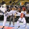 Taekwondo_DutchOpen2010_B0132.jpg