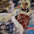 Taekwondo_DutchOpen2011_A2504