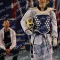 Taekwondo_DutchOpen2011_A2539