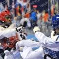 Taekwondo_DutchOpen2012_A0101